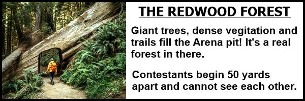 terrain2_redwood_forest.jpg