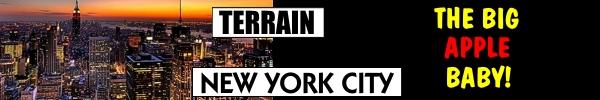 terrain_nyc.jpg